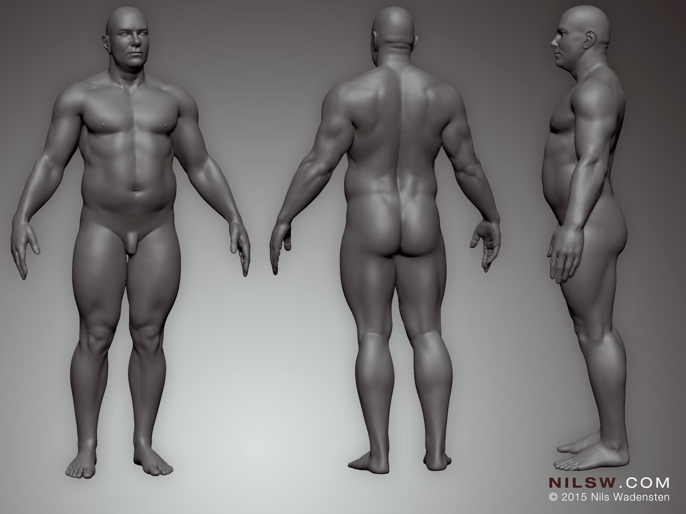 3D bodysculpt