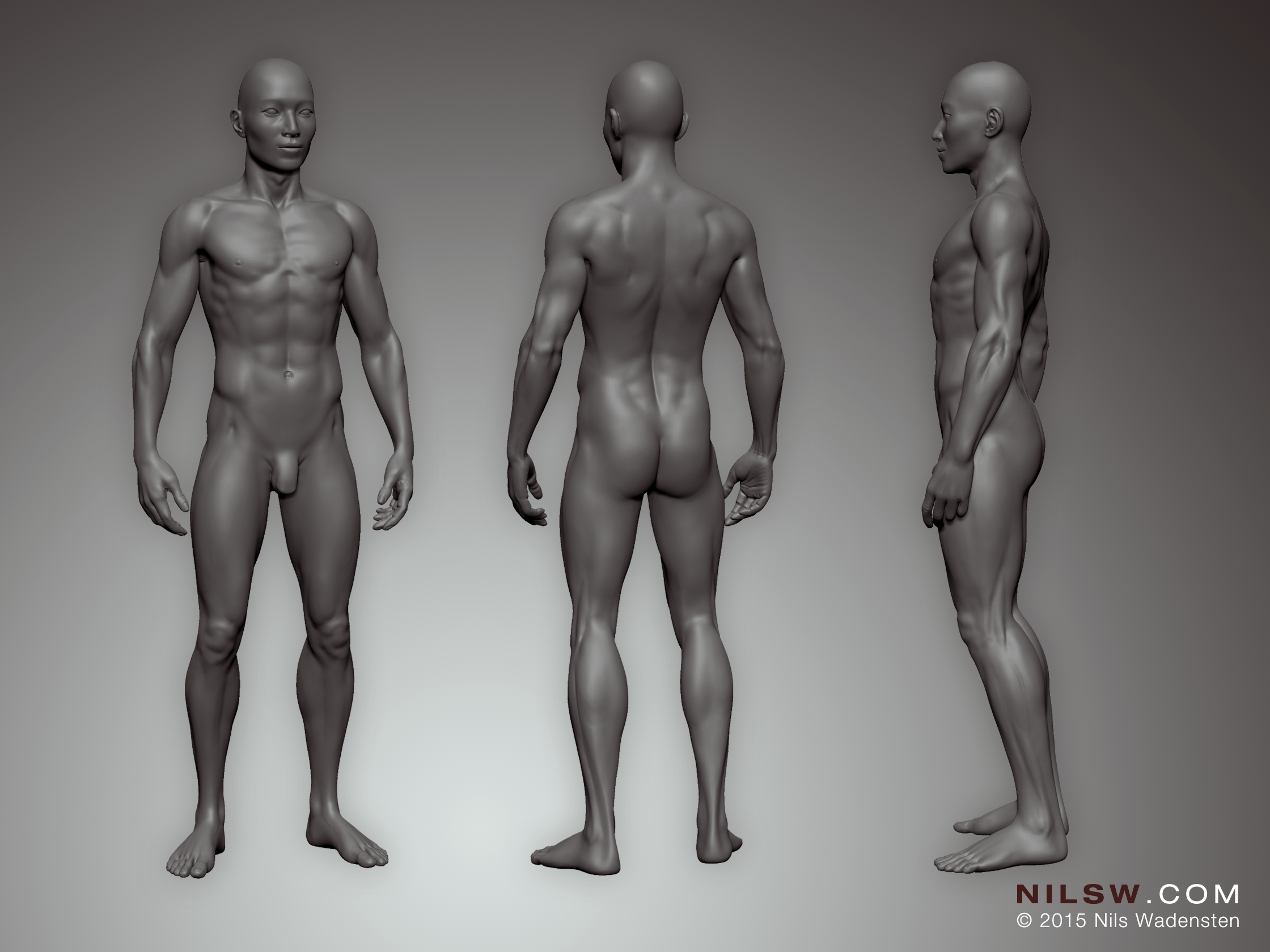 3D Bodysculpt by Nils Wadensten